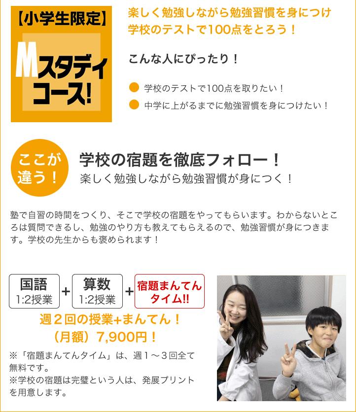 syougakusei-m_study